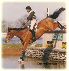 RENOWNED TRAINER DENNY EMERSON AT DRESSAGE4KIDS WEEKEND EDUCATIONAL PROGRAM