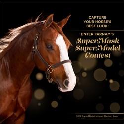 Farnam Seeks Winning Image  In SuperMask SuperModel Contest